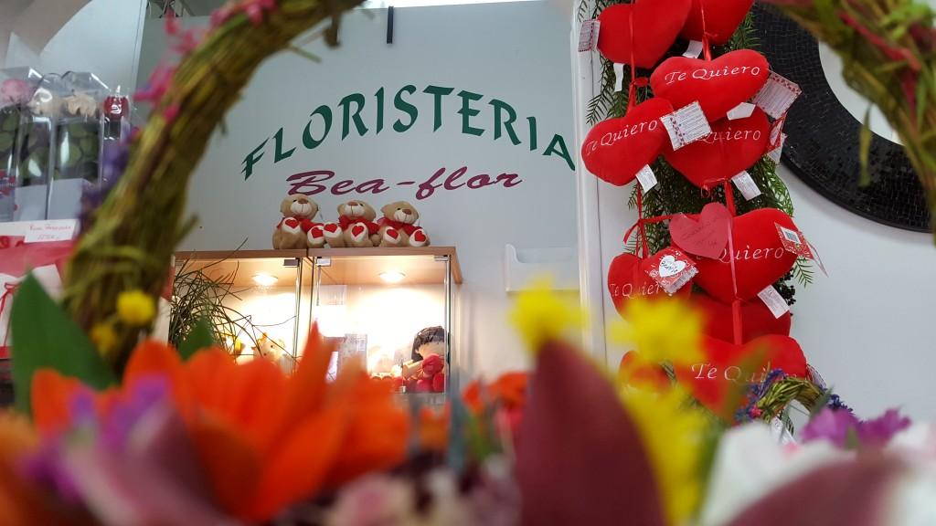 San Valentin Zaragoza Flores